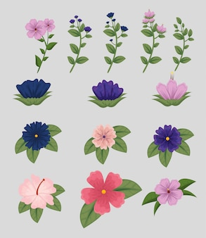 Набор цветов растений с листьями природы