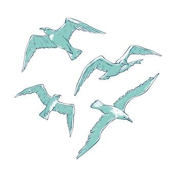 Set flying seagulls. bird gull angler monochrome outline sketch illustration  of tourist cards logos on marine theme.