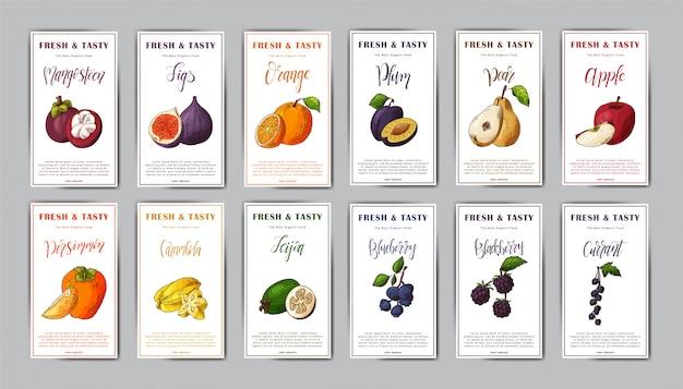 Set of food cards