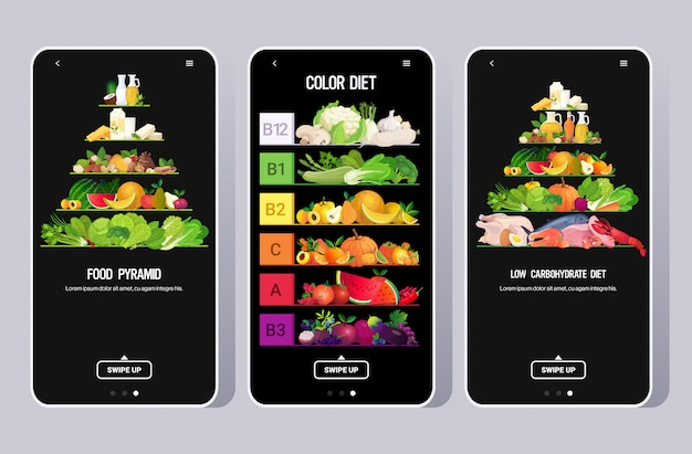 Set food drink pyramid eat rainbow different organic fruits herbs vegetables fish meat products collection vitamins infographic poster color diet concept mobile app horizontal