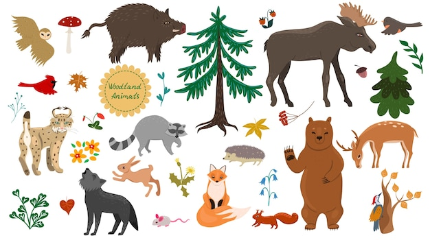 Set of forest animals, birds and plants isolated on a white background.