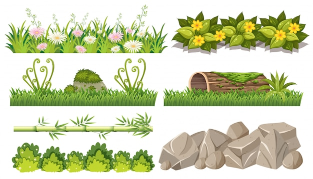 Set of forest objects