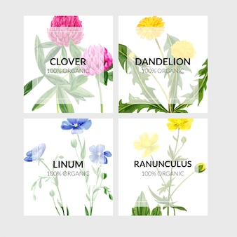 Set of four cards with wild flowers