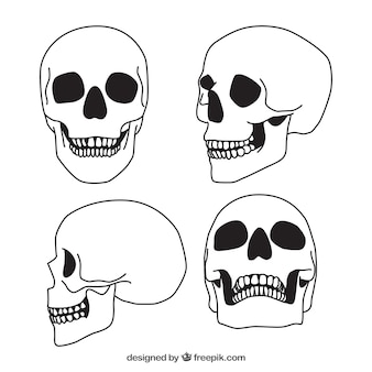 Set of four hand-drawn skulls