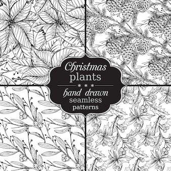 Set of four   seamless patterns with hand drawn winter plants.