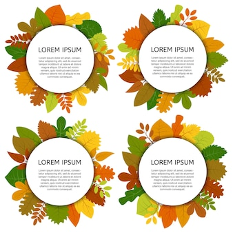 Set of four vector card with yellow leaves isolated on white background. colorful autumn leaves under white round label.