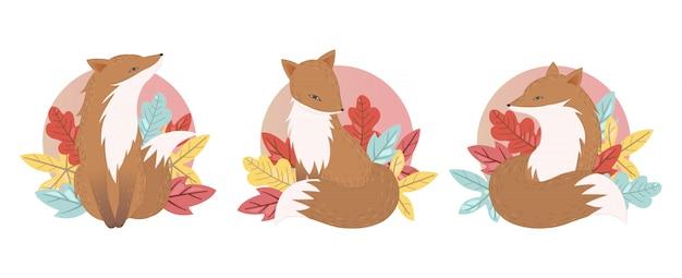 Set of fox escenes