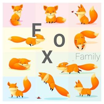 Set of fox family