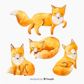 Set of foxes watercolor style