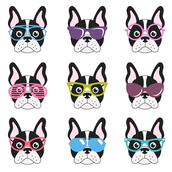 Set of french bulldogs with glasses