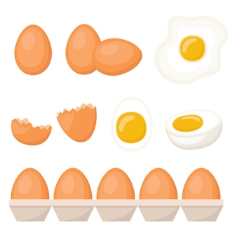 Set of fresh, cooked and fried eggs, vector illustration