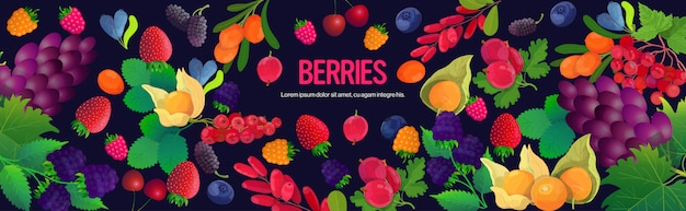 Set fresh juicy berries composition healthy natural food concept horizontal copy space