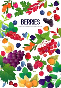 Set fresh juicy berries composition healthy natural food concept vertical copy space