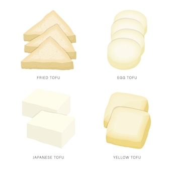 Set of fresh tofu and bean curd slices. organic and healthy food isolated element illustration.