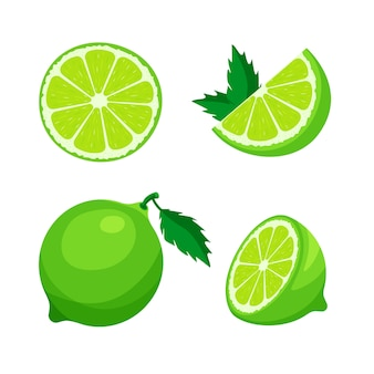 Set of fresh whole, half, cut slice of lime isolated on white background. citrus fruit and leaves. vegan food  icons in a trendy cartoon style. healthy food concept.