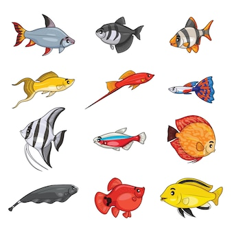 Set of freshwater aquarium cartoon fishes.