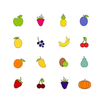 Set of fruit isoloted on white background. healthy food collection. flat style with stroke illustration. icons of different fruit and berries. vector