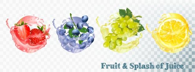 Set of fruit juice splash . blueberry, strawberry, grapes and citron. vector