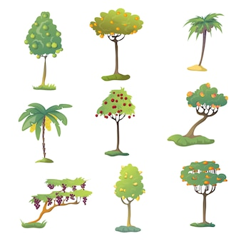 Set of fruit trees with fruits.  illustration on white background.