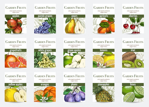 Set of fruits cards template