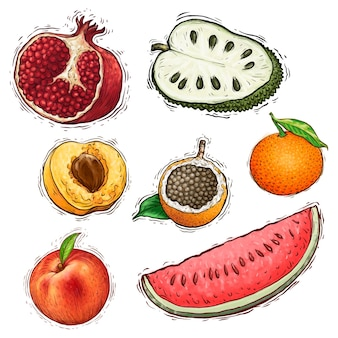Set of fruits collection watercolor illustration