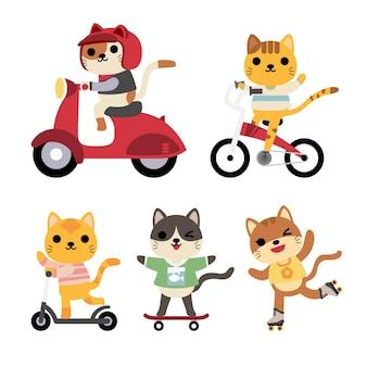 Set di gatti divertenti in attività: equitazione, bicicletta, bicicletta, pattinaggio a rotelle, skateboard