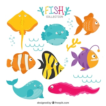 Set of funny fish