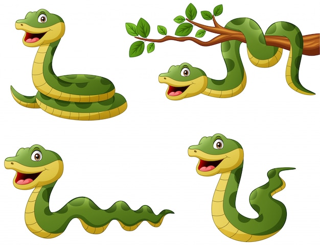 Set of funny green snake cartoon.   illustration