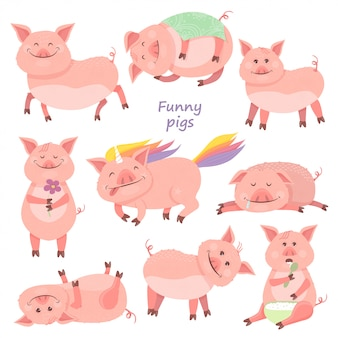 Set of funny piggy