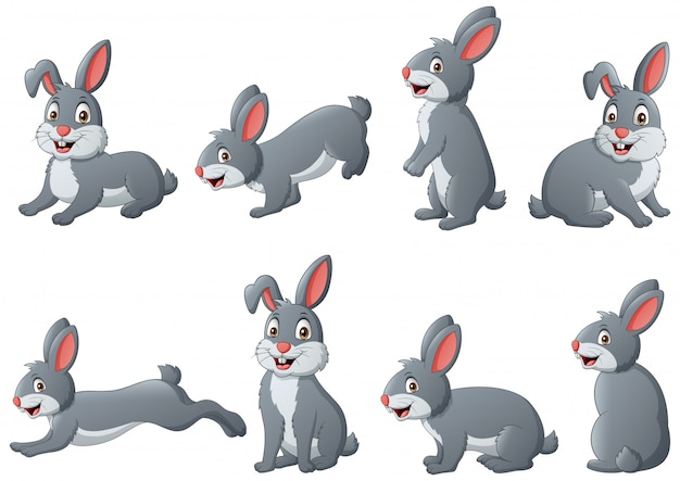 Set of funny rabbit cartoon.   illustration