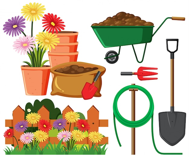 Set of gardening equipments and flowers on white background