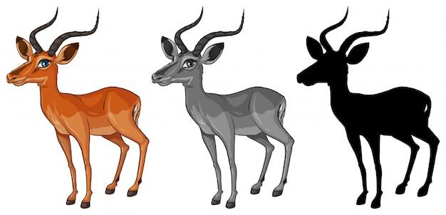 Set of gazelle character