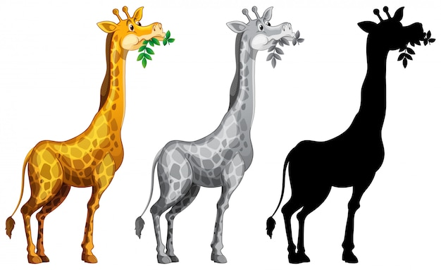 Set of giraffe character
