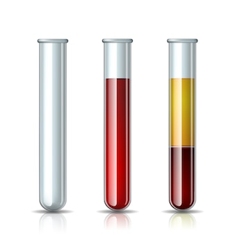 Set of glassware tube empty, filled blood and fractioned blood in vitro, plasma and layers red blood cells. chemical glass in realistic style.  illustration