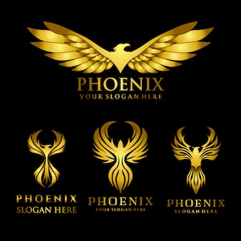 Set of gold eagle phoenix logo design template