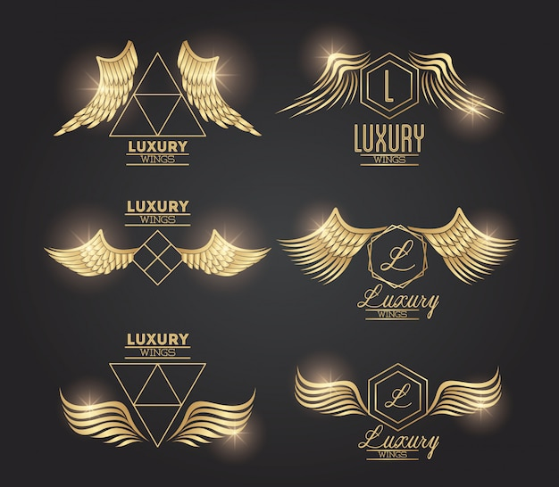 Set of golden wings emblems