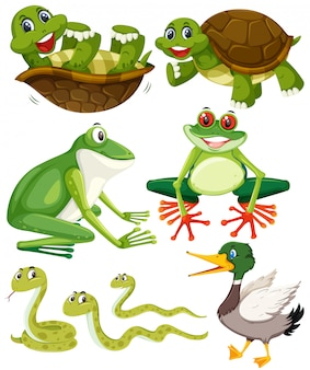 Set of green animals