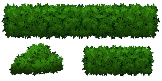 Set of green bushes and herbs of various shapes isolated on white background