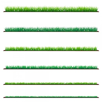 Set of green grass, isolated on white