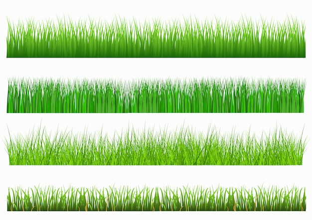 Set green grass on white background