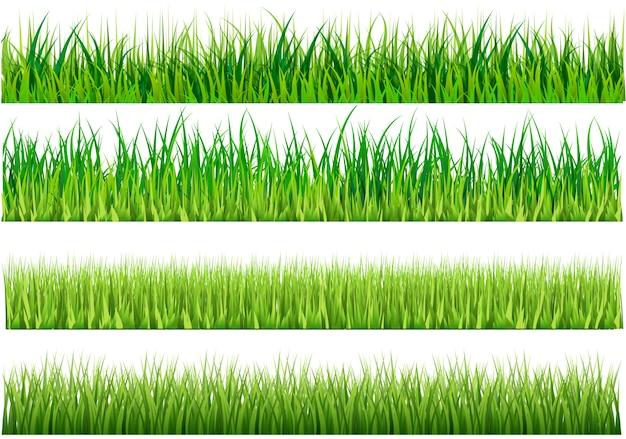 Set green grass on white