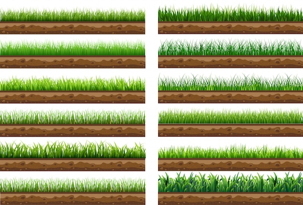 Set green grass with isolated vector illustration