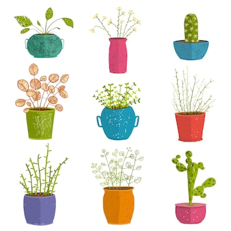 Set of green indoor plants in pots. leaf and house gardening, flowerpot and flora isolated objects, houseplant design collection  illustration