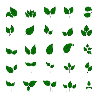 Set of green leaves  elements. this image is a  illustration.