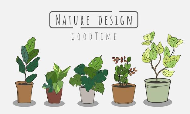 Посадить зеленое растение в горшок