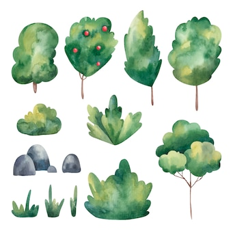 Set of green trees, grass, stones watercolor illustration on a white background