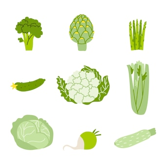 Set of green vegetables vector illustration of healthy food isolated on white background