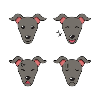 Set of greyhound dog faces showing different emotions