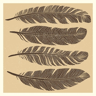 Set of grunge vintage bird feathers