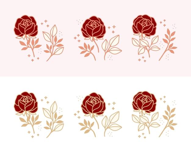 Set of hand drawn botanical rose flower, and floral leaf branch line art elements